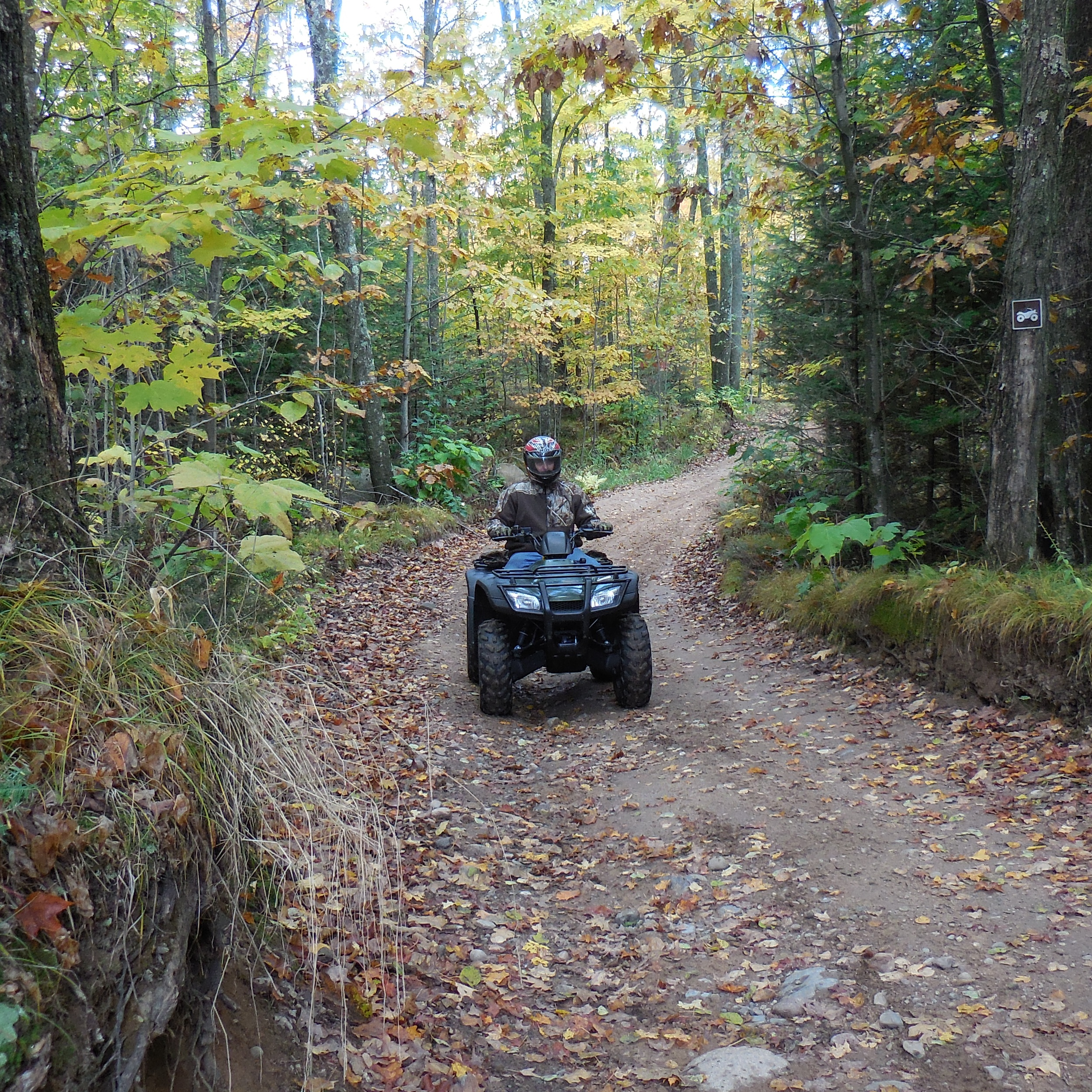 Langlade County Wisconsin Tourism: The County of Trails